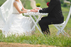 Couple at Table on Grass Royalty Free Stock Photography