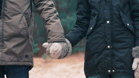 The couple take and hold hands on woody background.  stock video