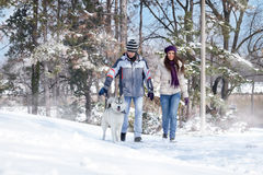 Couple taking dog for a walk Royalty Free Stock Photos
