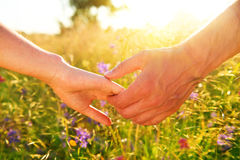 Couple taking hands and walking on the meadow field Royalty Free Stock Images