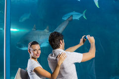 Couple taking photo of shark Royalty Free Stock Photography