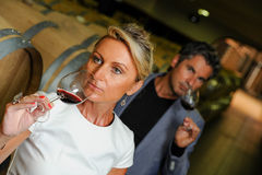 Couple tasting wine in a cellar Royalty Free Stock Photo