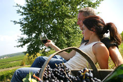 Couple tasting wine in a vineyard. Man and young woman lying in a vineyard next to a basket of grapes, tasting wine Stock Image