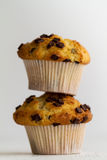 Couple of tasty vanilla muffins with chocolate chunks on bright Stock Image