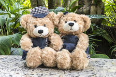 Couple teddy bears on garden background. Couple teddy bears picnic in garden, love concept Stock Image