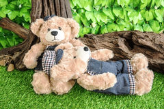 Couple teddy bears on graden background. Couple teddy bears on garden background, love concept Stock Photography