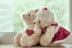 Couple teddy bears in love's embrace Stock Photos