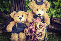 Couple teddy bears with rose in the garden vector illustration