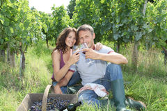 Couple testing wine in vineyard. Closeup of couple of winegrowers drinking wine during vintage season Royalty Free Stock Photography