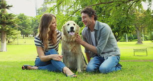 Couple with their dog in the park stock footage