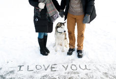 Couple and their Siberian huskies. Stock Image