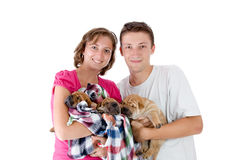 Couple with three Shar Pei baby dogs Stock Images