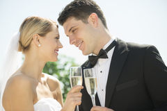 Couple Toasting Champagne Flutes Against Sky Royalty Free Stock Image