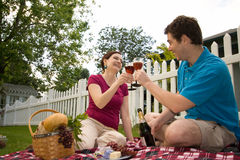 Couple Toasting on Picnic-Horizontal stock photo