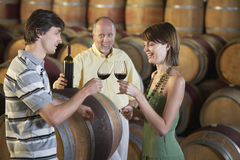 Couple Toasting Red Wine In Cellar Royalty Free Stock Image