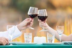 Couple toasting wine Royalty Free Stock Image