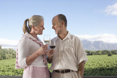 Couple Toasting Wine Glasses At Field Royalty Free Stock Photography