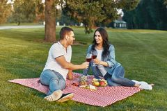 Couple toasting with wine glasses at picnic stock photography