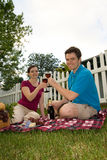 Couple Toasting Wine Glasses on Picnic-Vertical Stock Photos
