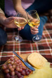 Couple toasting wineglasses by grapes and cheese on picnic blanket Stock Photography