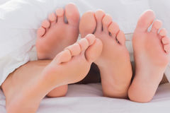 Couple touching their feet together under the duvet Stock Photography