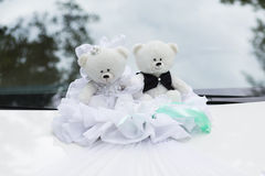 Couple toys teddy bear Royalty Free Stock Images