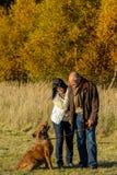 Couple training dog autumn sunset park Stock Image