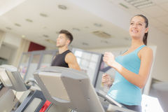 Couple training in the gym Stock Images