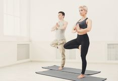 Couple training yoga in tree pose. Fitness, men and women training yoga in tree pose. Young couple makes relaxing exercise, copy space Royalty Free Stock Photography
