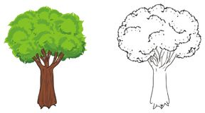 Couple of tree Royalty Free Stock Image