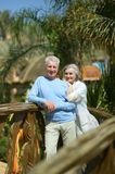 Couple at tropic hotel Stock Photography