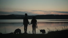 Couple with two dogs on beach. Back view of two silhouettes with dogs holding hands on coastline stock video footage
