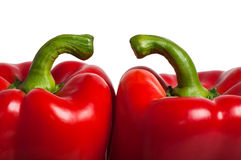A couple of two red bell peppers. Two sweet bulgarian red peppers isolated on white background royalty free stock photography