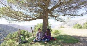 Couple under big wonderful tree stock video footage