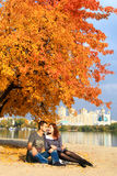 Couple under bright orange tree in autumn Royalty Free Stock Image