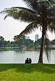 Couple under palm tree. Stock Photos