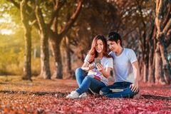 Couple using mobile phone in park. Couple using mobile phone in the park Stock Photos
