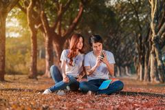 Couple using mobile phone in park. Couple using mobile phone in the park Royalty Free Stock Photography