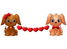 Couple valentine dogs with red heart Royalty Free Stock Images