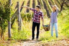 Couple at vineyard Stock Photography