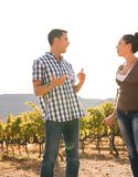 Couple at the vineyard talking to each other Royalty Free Stock Images