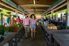 Couple at the Vinton Farmers Market. Vinton, VA – April 28th: Couple shopping at the Vinton Farmers Market during the Annual Dogwood Festival located in Vinton Stock Image