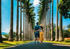 63 Palm Alley Peradeniya Royal Botanical Park Kandy Sri Lanka ...