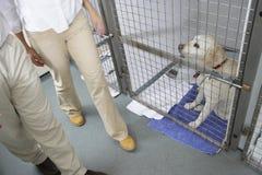 Couple Visiting Pet Dog Royalty Free Stock Photos