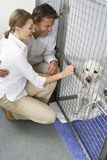 Couple Visiting Pet Dog Stock Photography