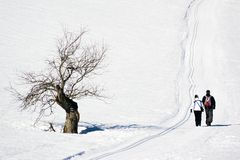 A couple walikng in the winter Royalty Free Stock Photos