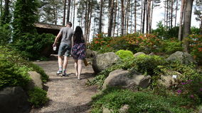 Couple walk footpath between colorful rhododendron blooms flower stock video