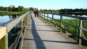 Couple walk hand in hand on wooden bridge through lake. Young romantic couple boy and girl walk hand in hand on wooden bridge through lake and woman with bicicle stock video footage