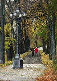 Couple walk on park alley. Couple, a man and woman walk on park alley, lantern, trees and falling leaves Stock Image