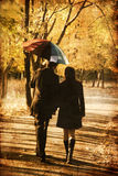 Couple walking at alley in autumn park. Photo in old image style Royalty Free Stock Photo